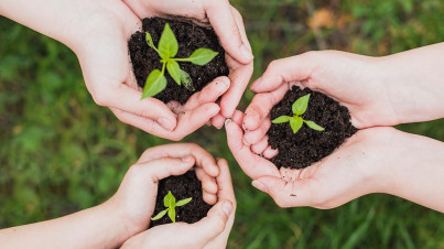 Développement durable ? actualité